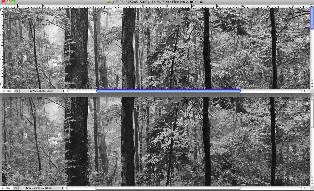 Top: Capture 1 processing, color export and B&W conversion with Silver Efex Bottom: Capture 1 processing and B&W conversion