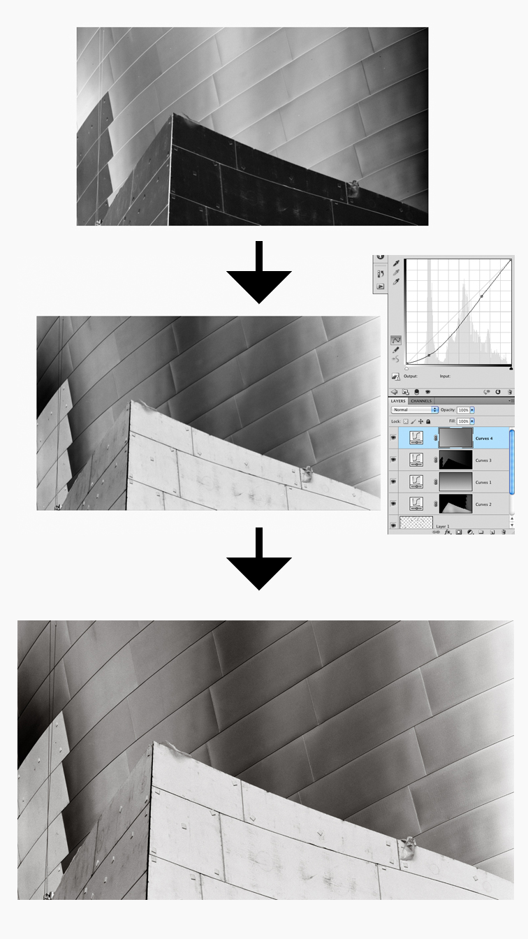 Drum Scan, Invert and Correct in Photoshop, Optimize for Print or Web
