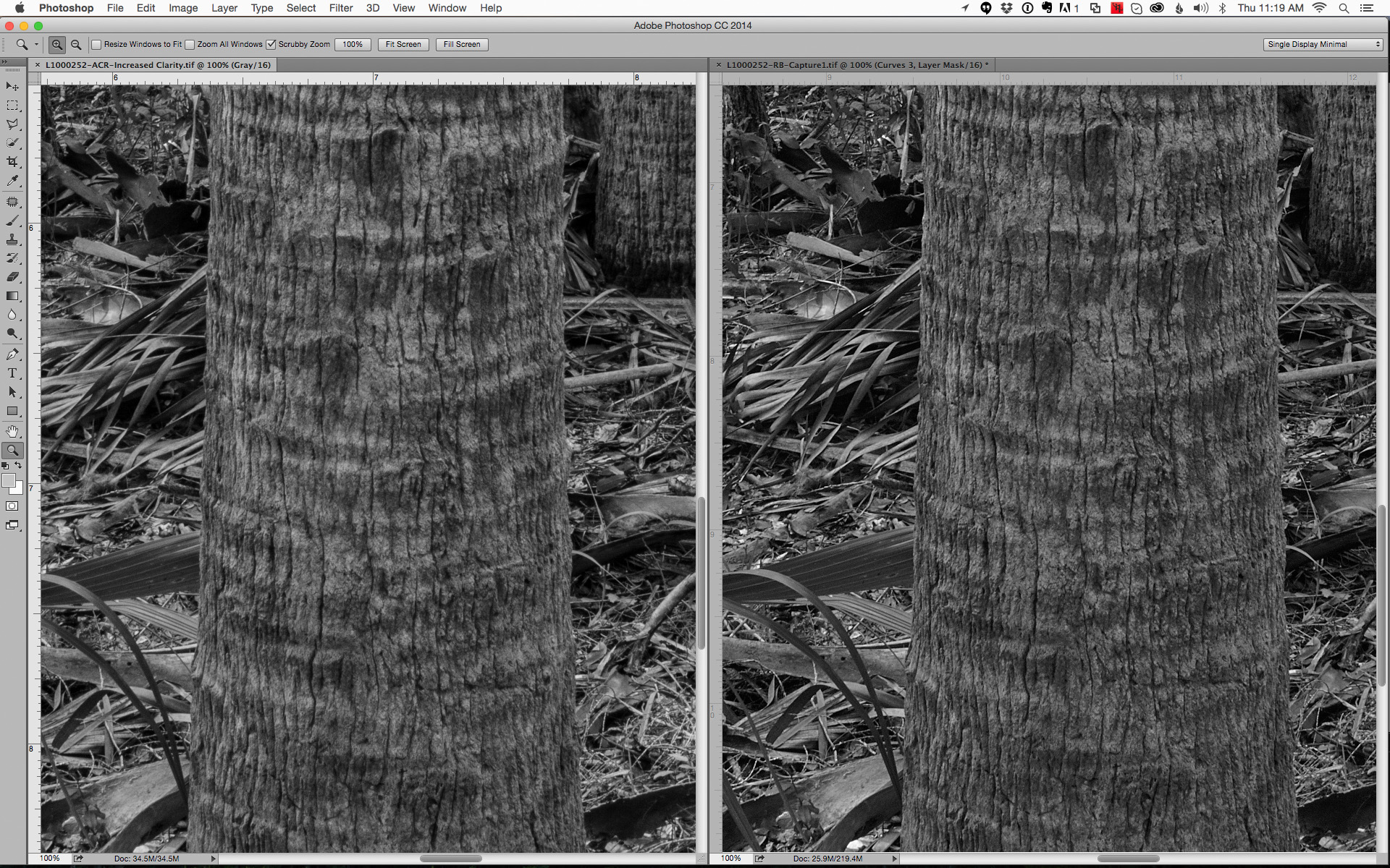 Adobe Camera Raw on left and Capture 1 Pro 8 on right at 100% pixel view