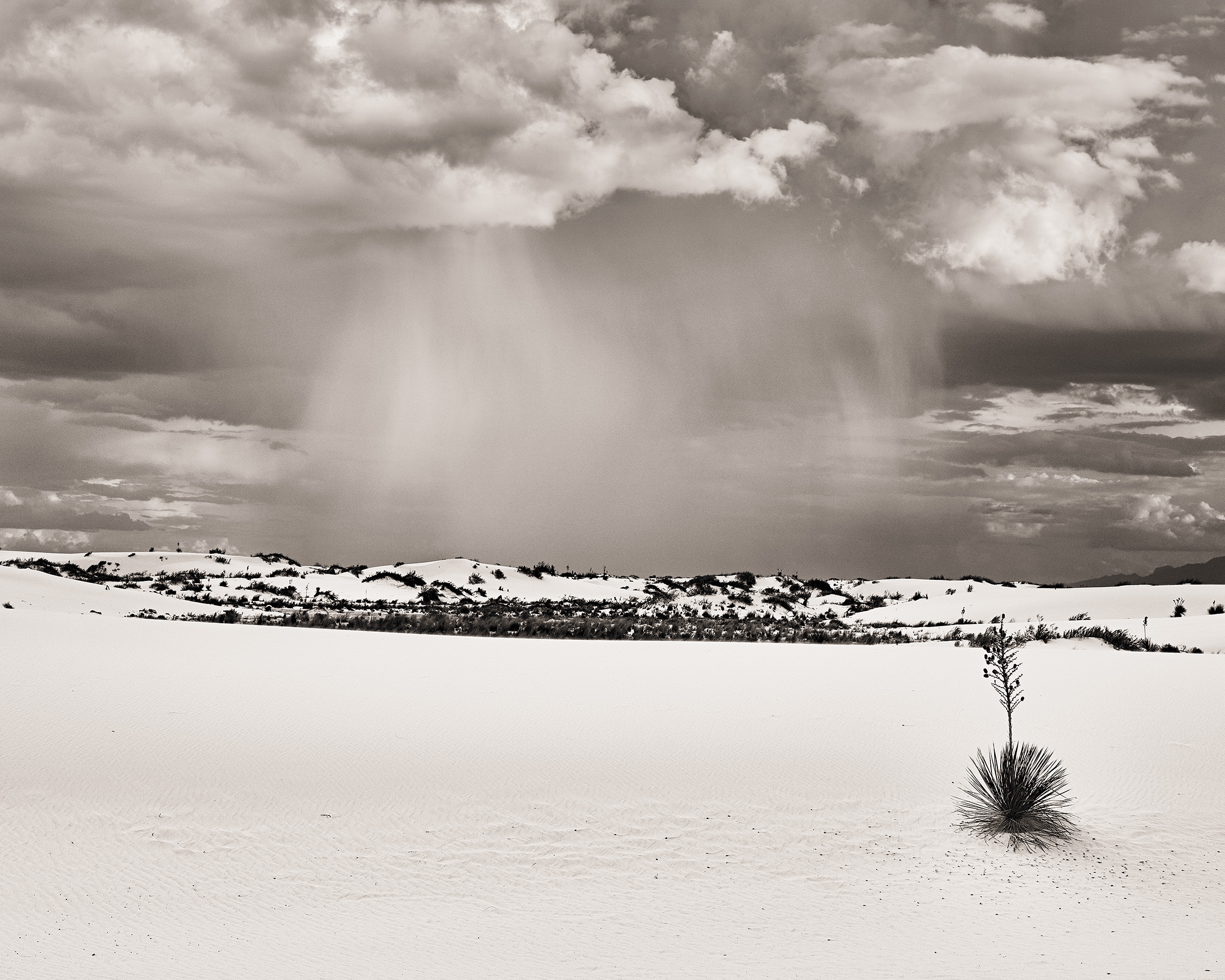 White Sands National Monument, 2015