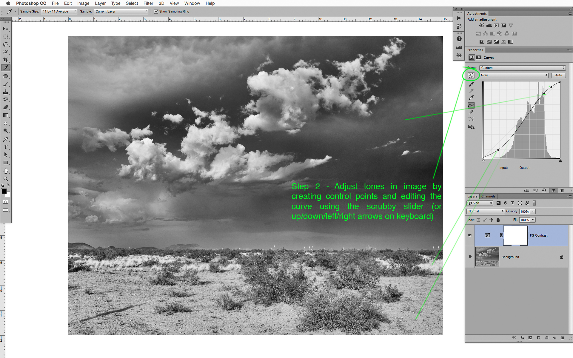 Foreground Contrast Layer - ILCC 1.jpg