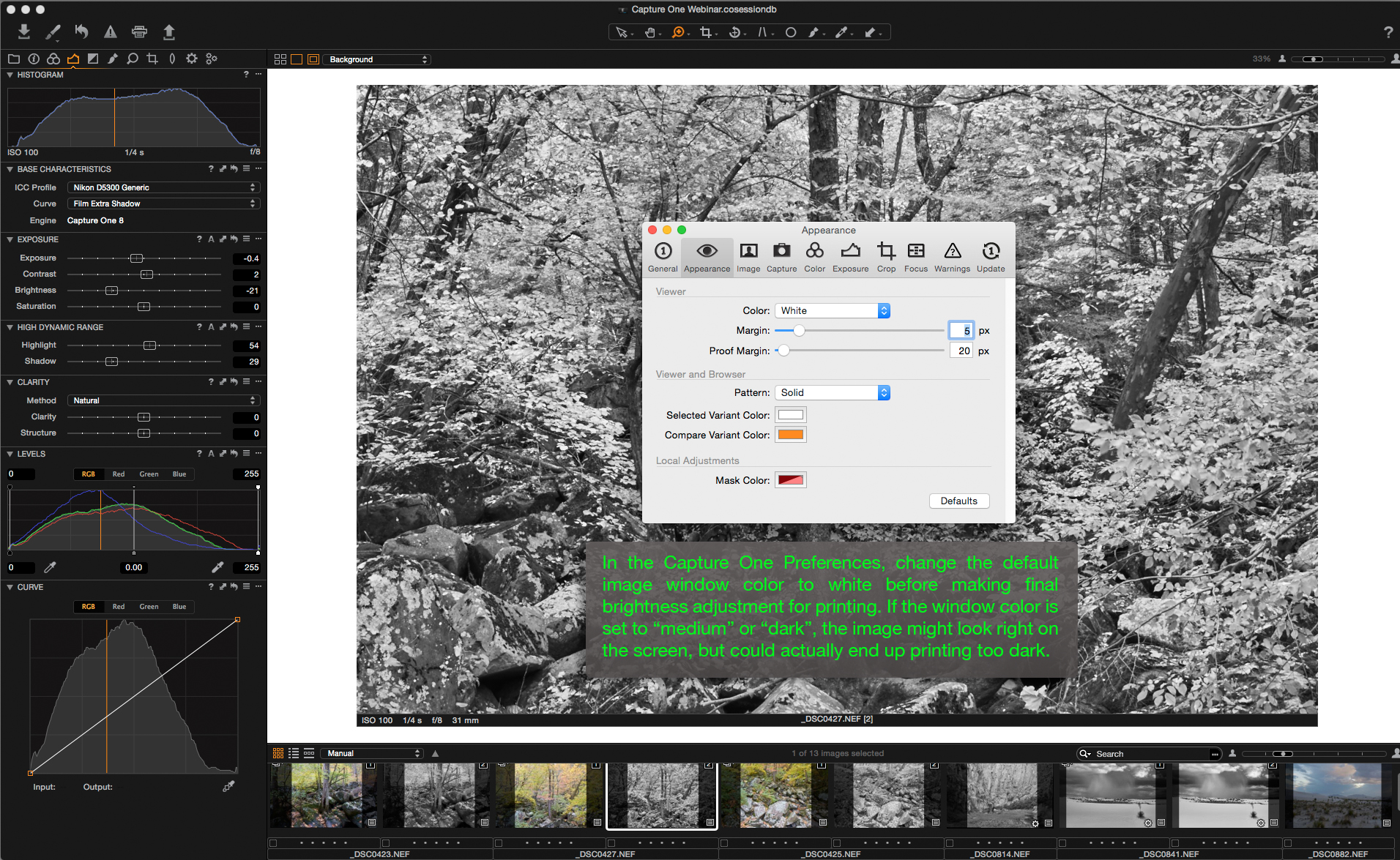 Capture One Custom Workspaces Window Color.jpg