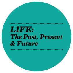life_past_present_future_circle.png
