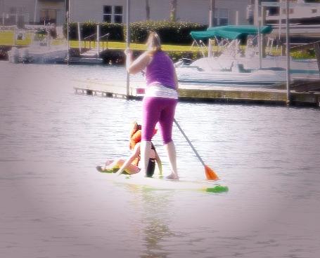 Manatee-Paddle-1.jpg