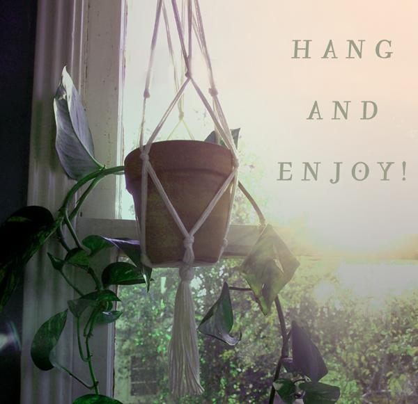 10how+to+plant-hanger.jpg