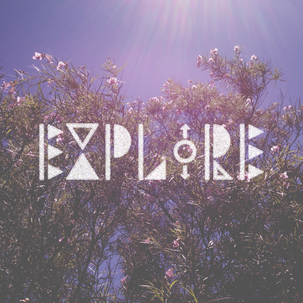 Explore via bohocollective.com