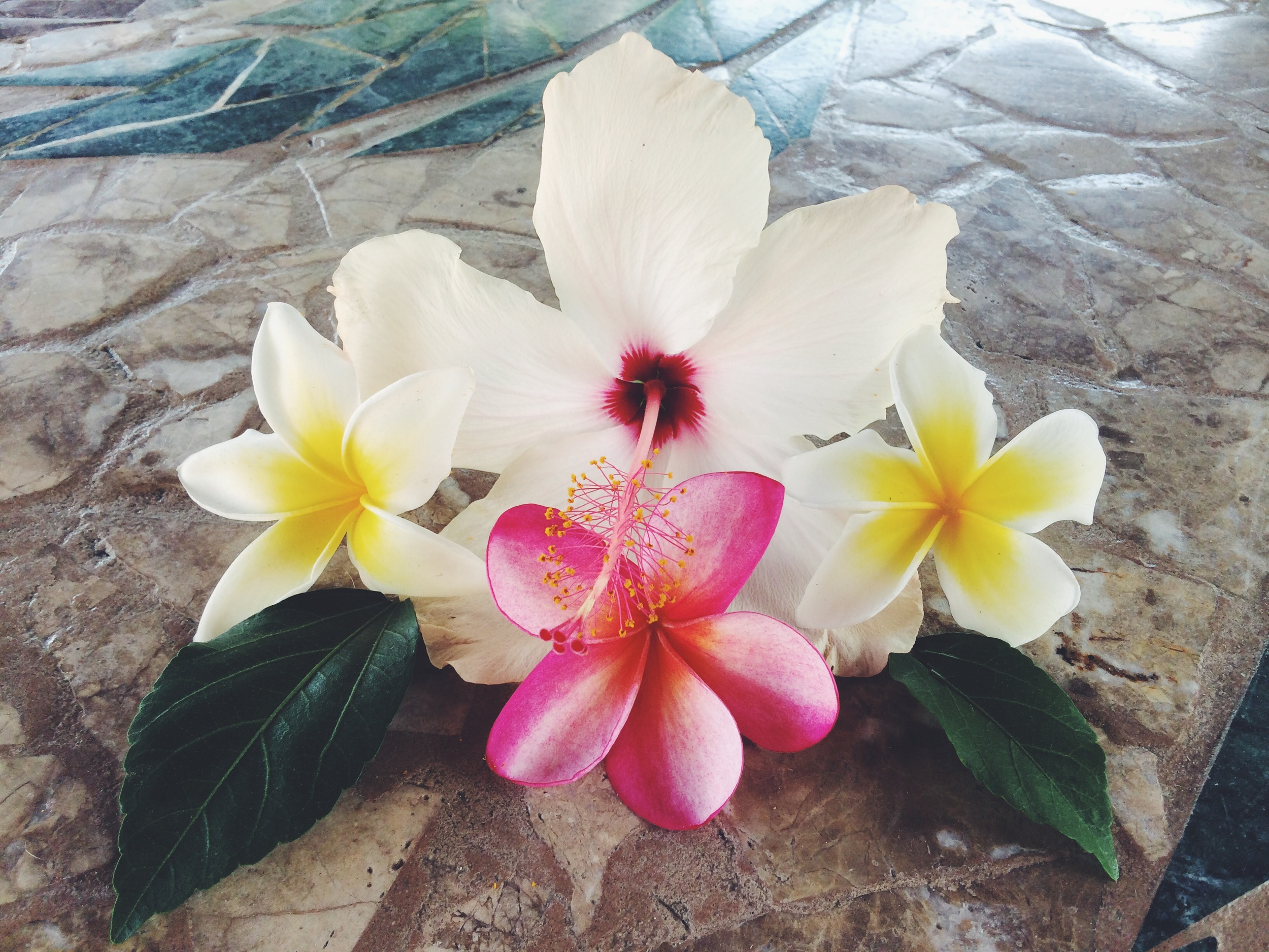 Hibiscus & Plumeria - DIY on the Boho Collective
