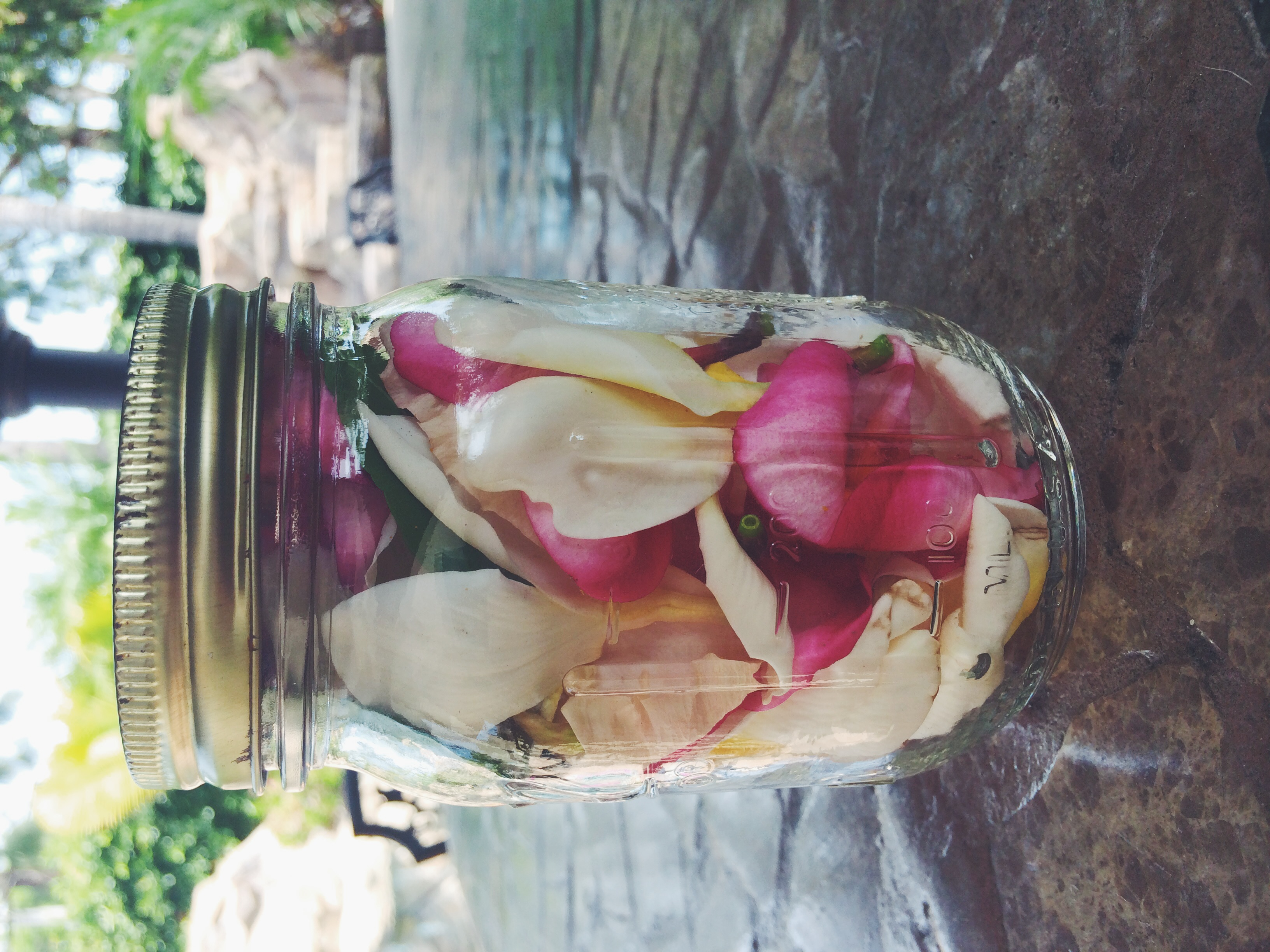 Plumeria & Hibiscus Beauty Oil - DIY Boho Collective