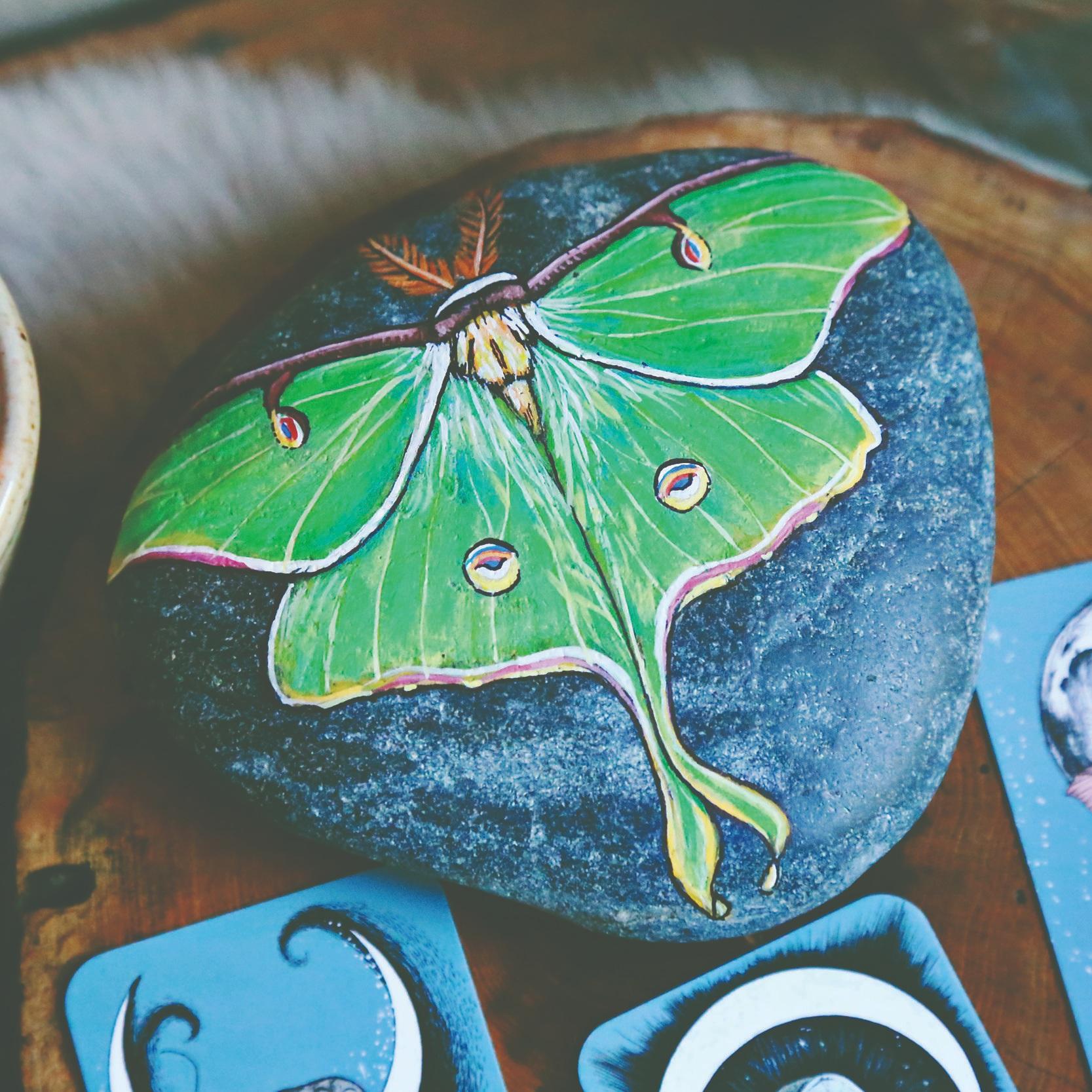 Lotus and Nightshade via bohocollective.com