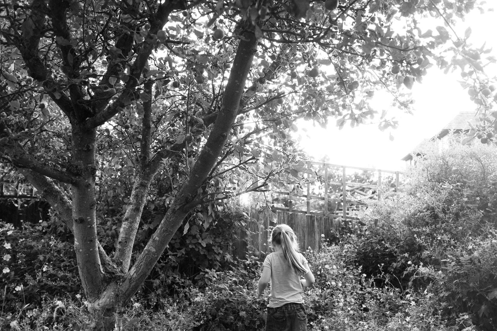 apple-picking-in-the-garden-02.jpg