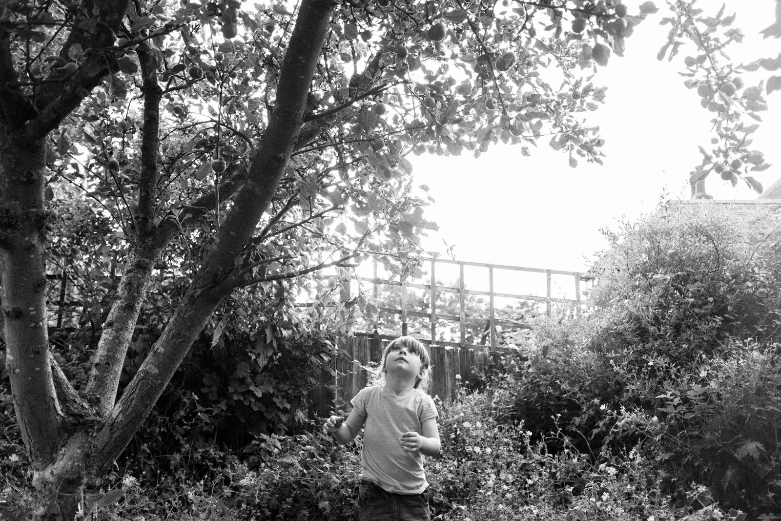apple-picking-in-the-garden-09.jpg