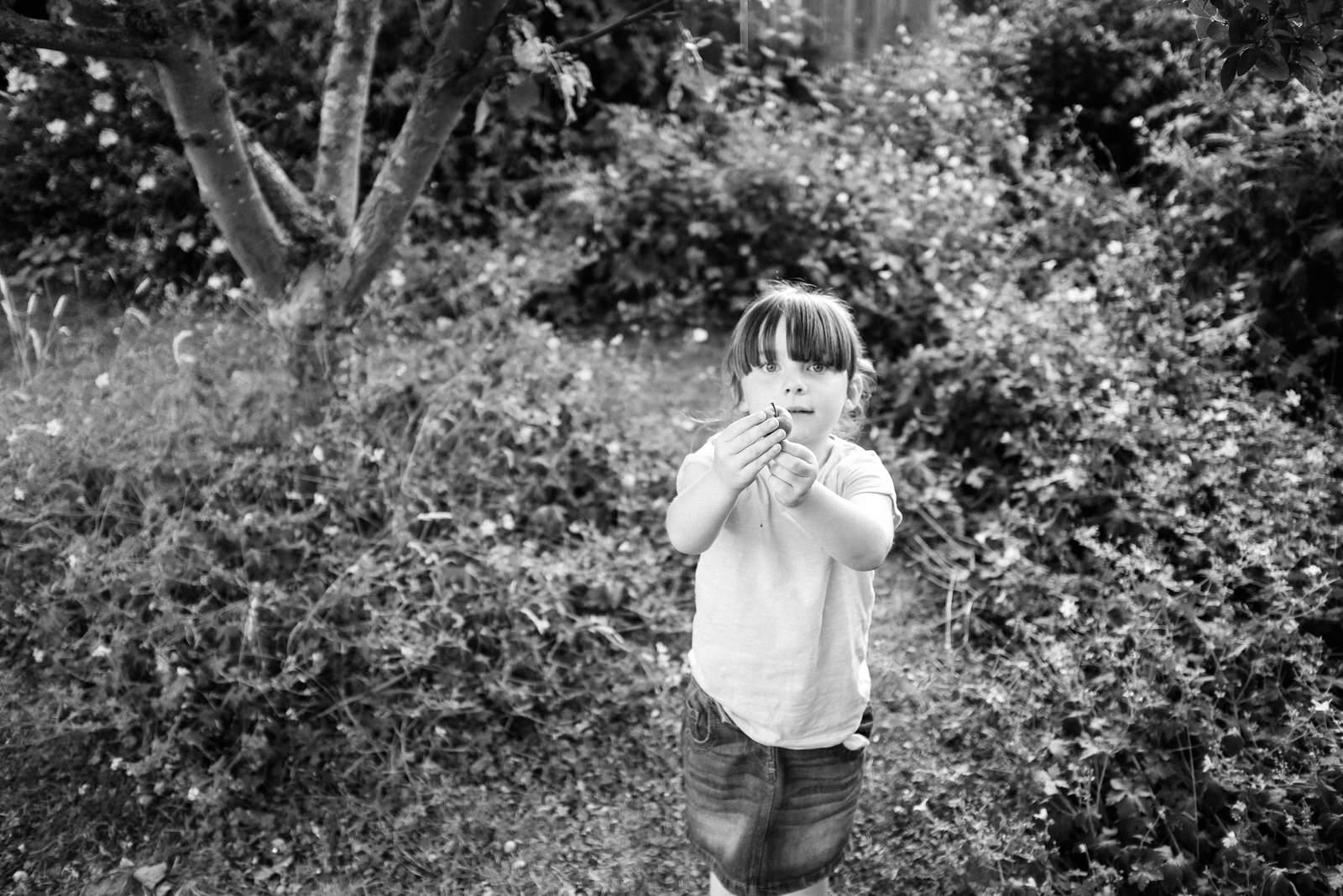 apple-picking-in-the-garden-10.jpg