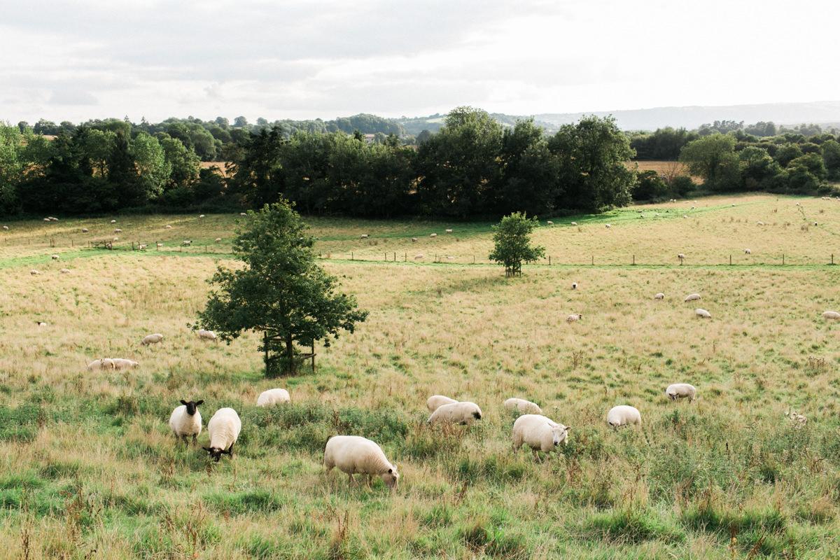 Folly Farm Wediing Photographer-312697.jpg
