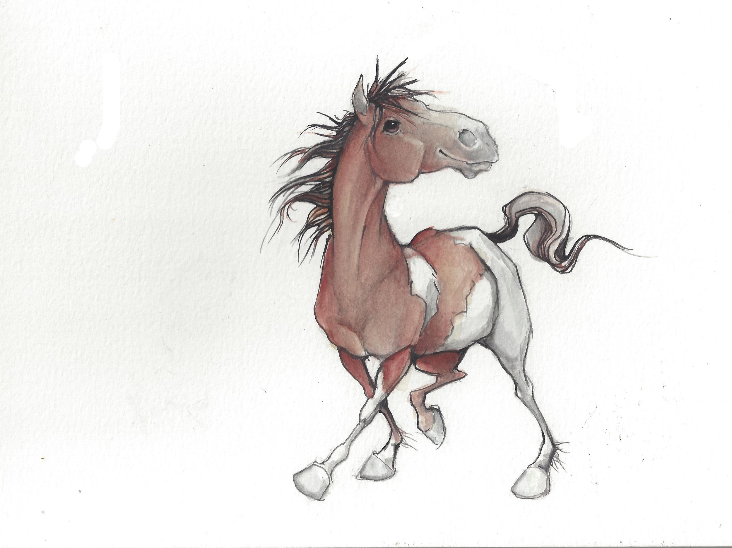 The pony I fell in love with
