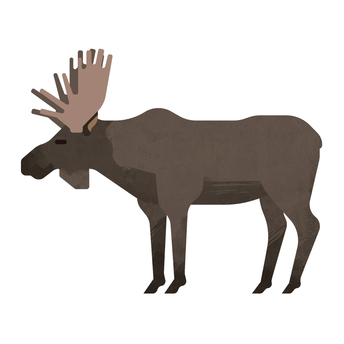 capebreton_poster_animals_moose.png