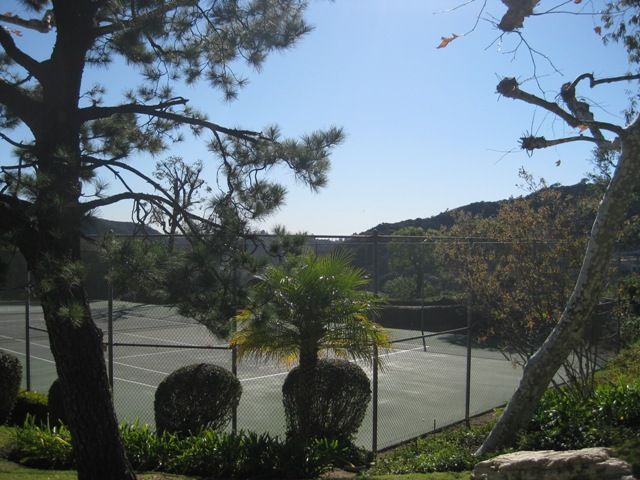 The Wallingford Drive tennis courts.