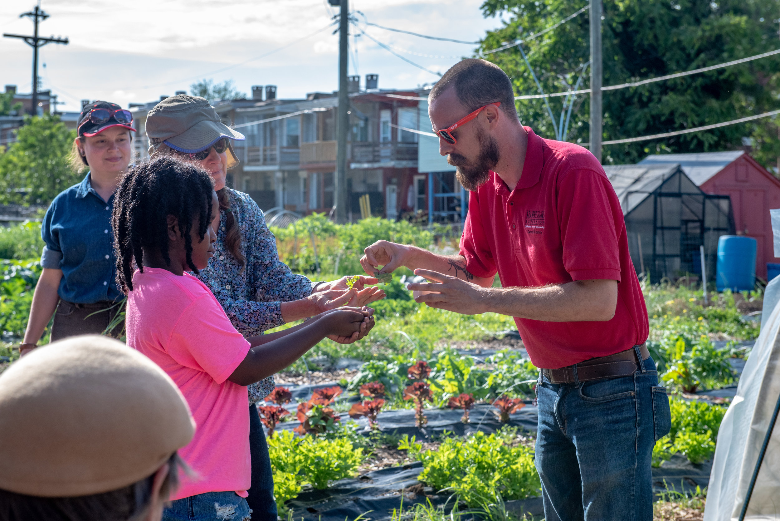 Identifying insect pests with Cultivate Baltimore workshop on Urban Farming at  Whitelock Community Farm