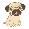 OLD-PUG.png
