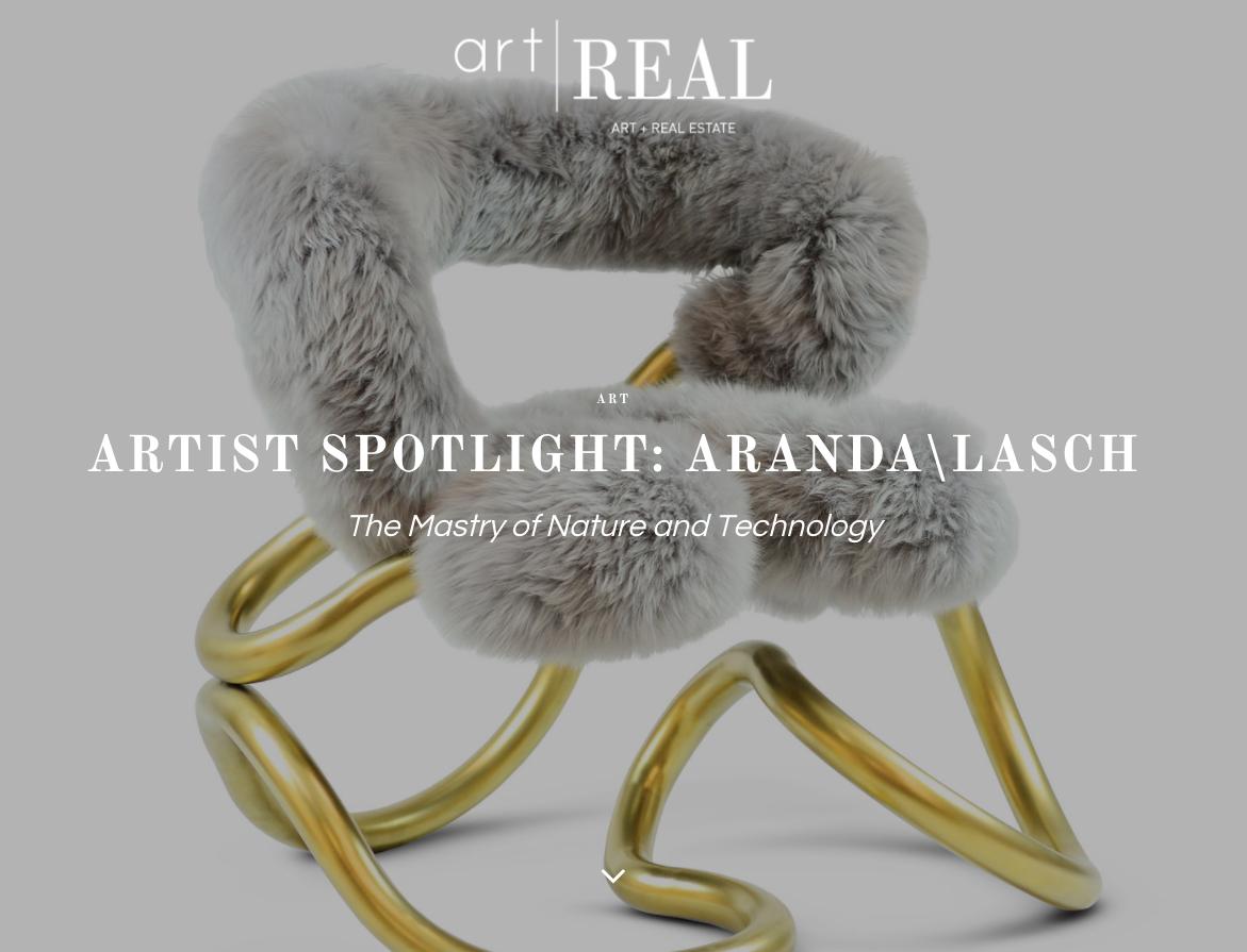 artist spotlight aranda lasch