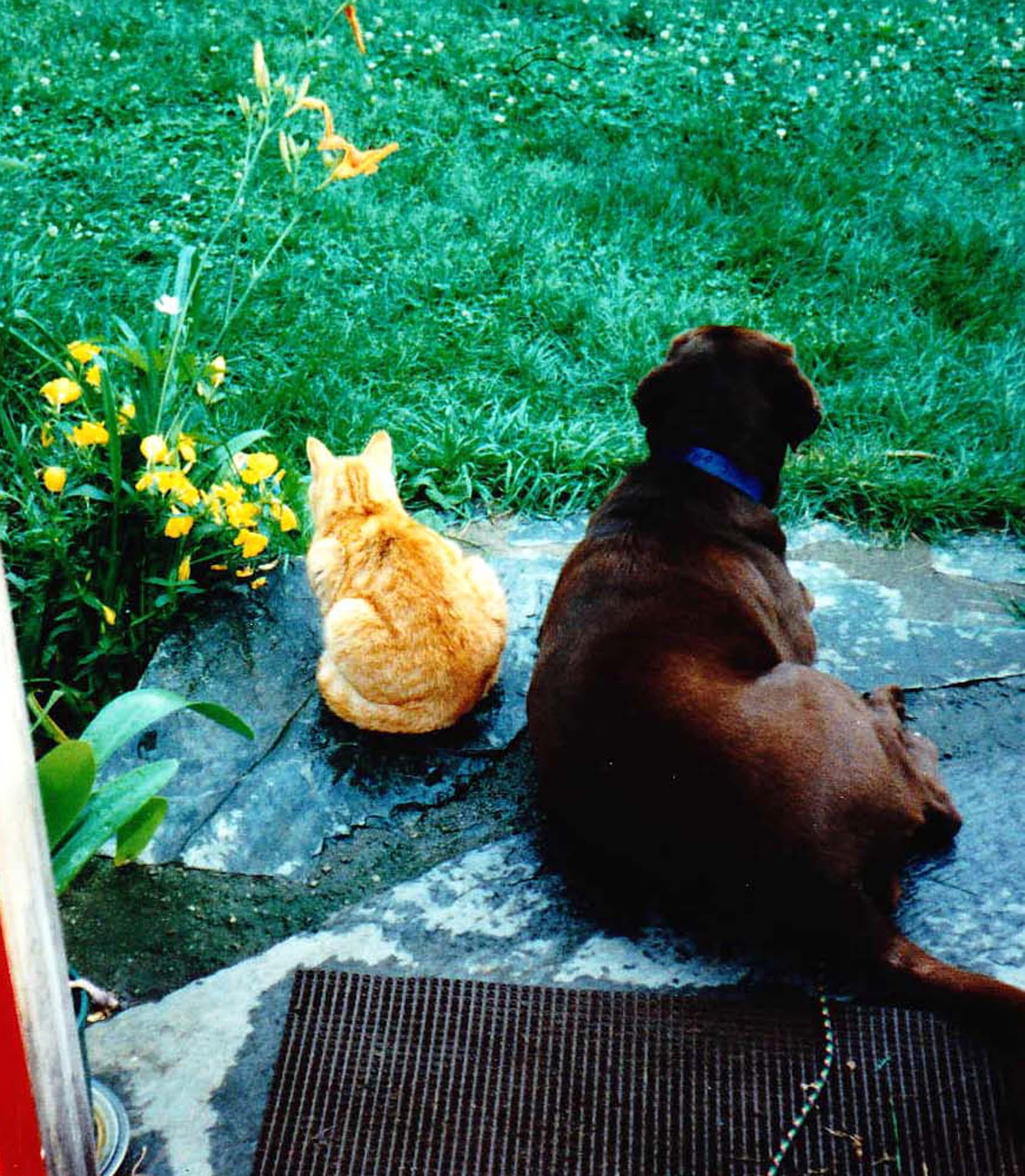 Betty and Kitty Vermont.jpg