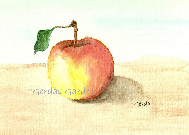 """Apple"" Watercolor on paper"