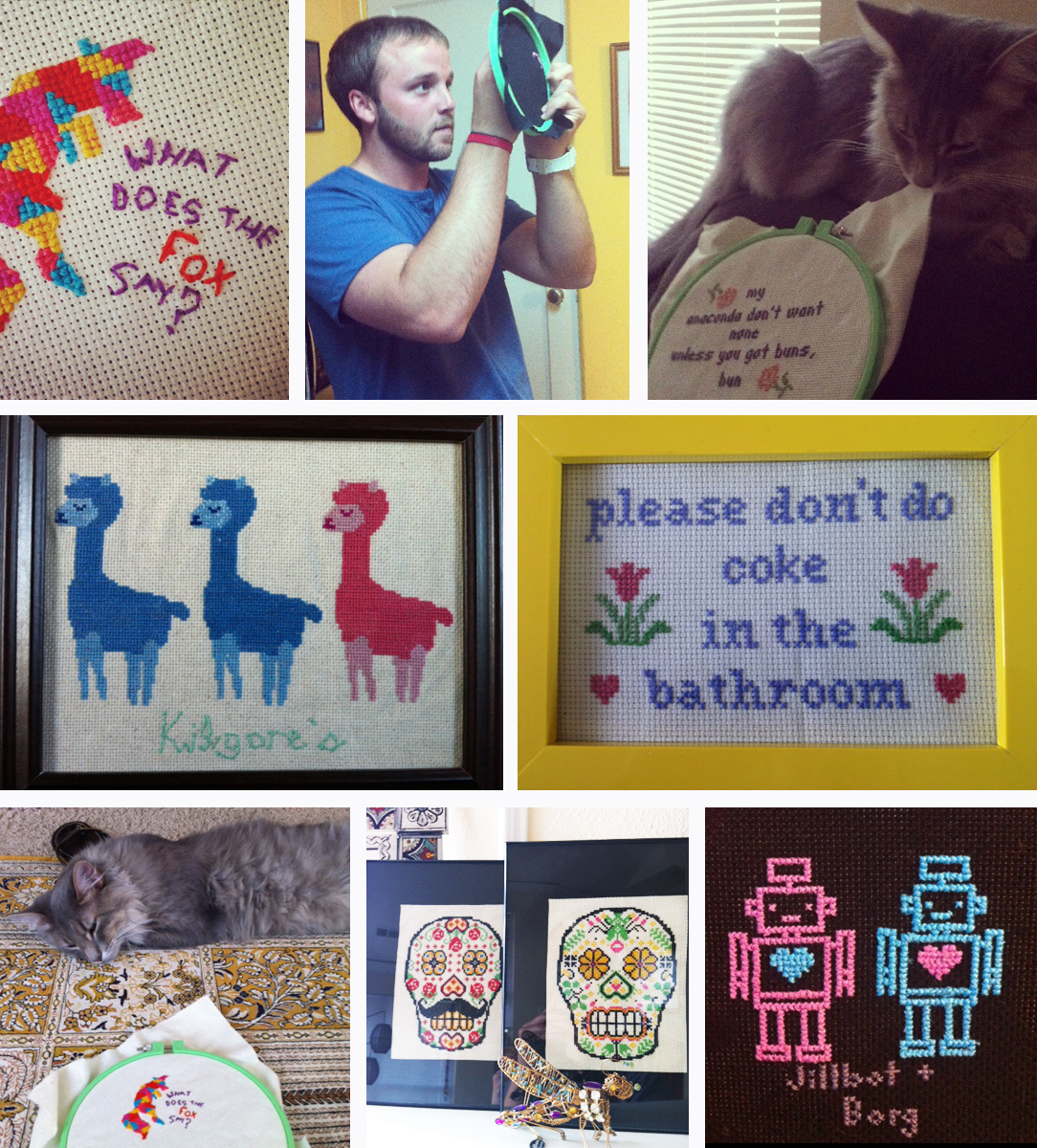 A few of Haley's pieces she has completed.... Also, check out her handsome cat Mishka! (Clearly a cross stitch fan)