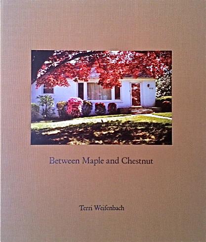 Terri Weifenbach / Between Maple and Chestnut