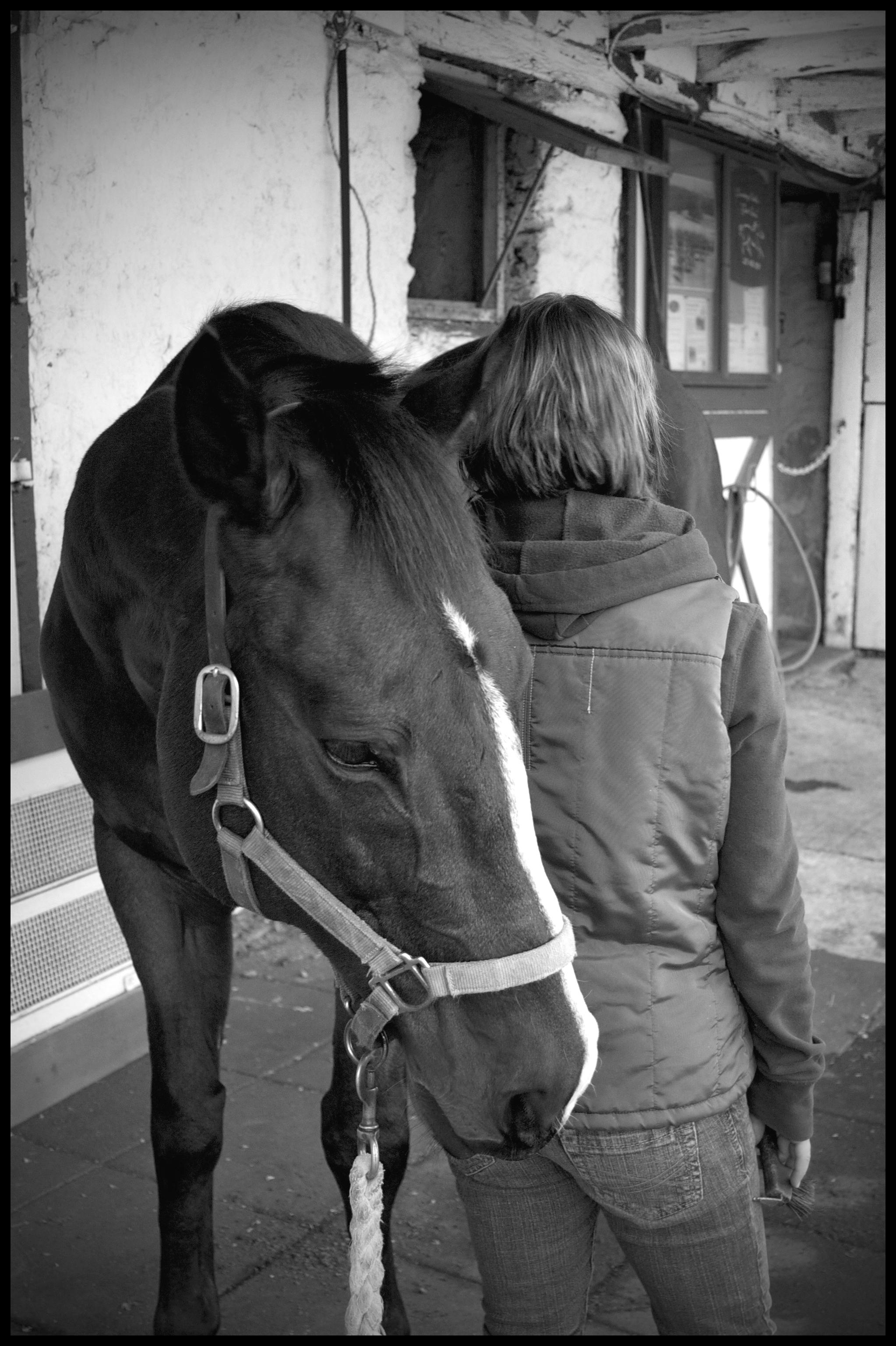 girl with horse jpg.jpg