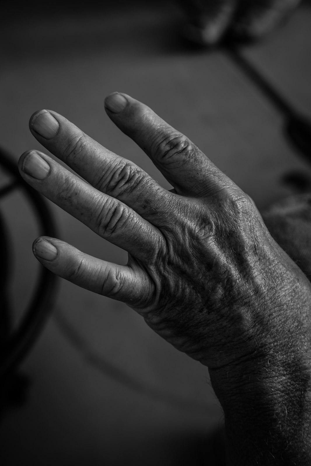 Haydn, the Hand Model