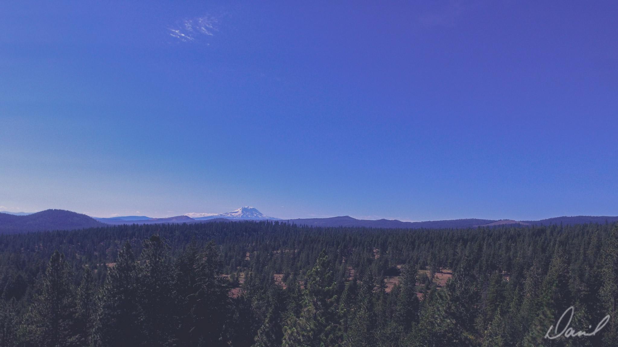 Mt Rainier in the distance