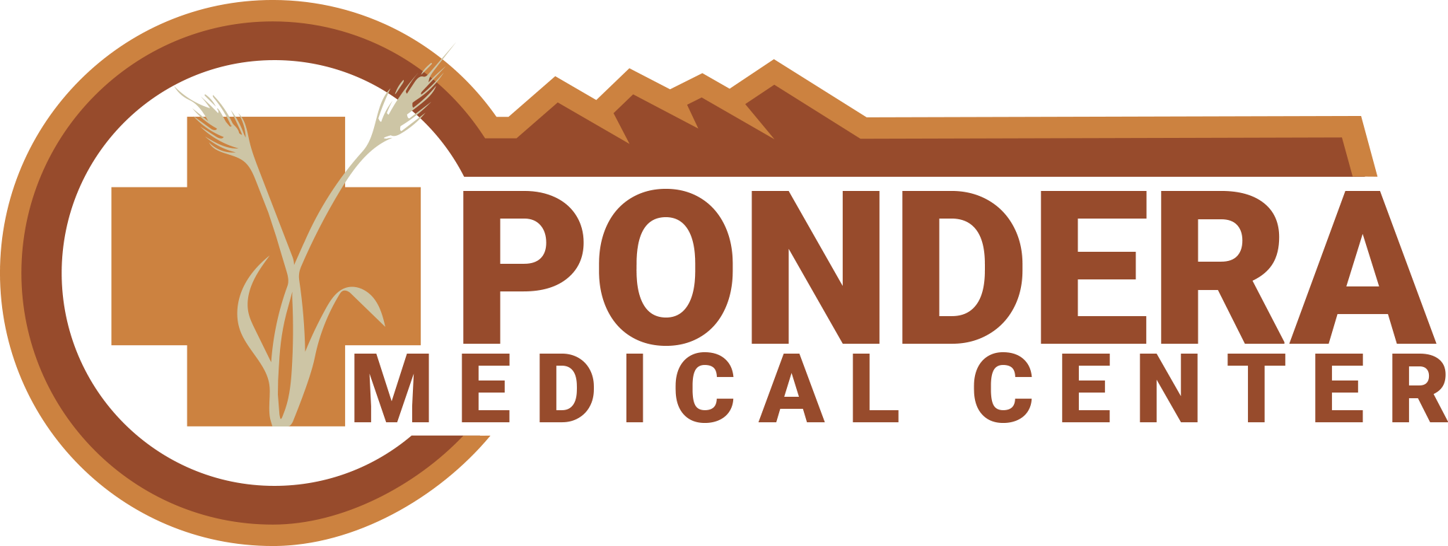 PMC Logo color 2048px.png