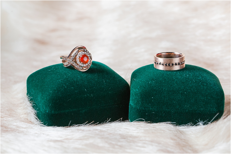 elegant-classic-fairytale-wedding-photos-in-detroit-mi-at-the-masonic-temple-by-courtney-carolyn-photography_0010.jpg