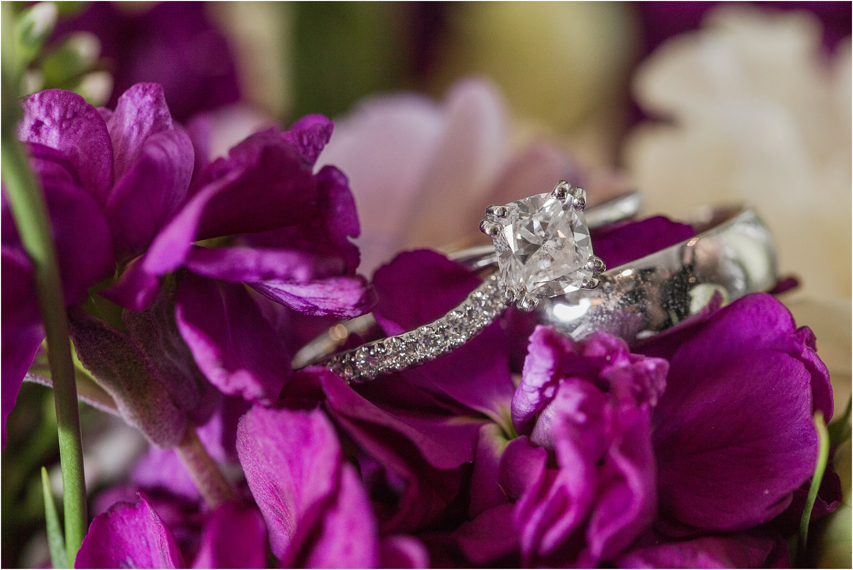 classic-wedding-photos-at-great-oaks-country-club-in-rochester-hills-mi-by-courtney-carolyn-photography_0020.jpg