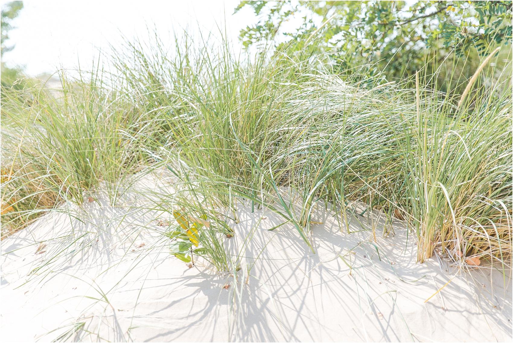 fun-whimsical-beach-wedding-photos-in-st-joseph-michigan-by-courtney-carolyn-photography_0062.jpg