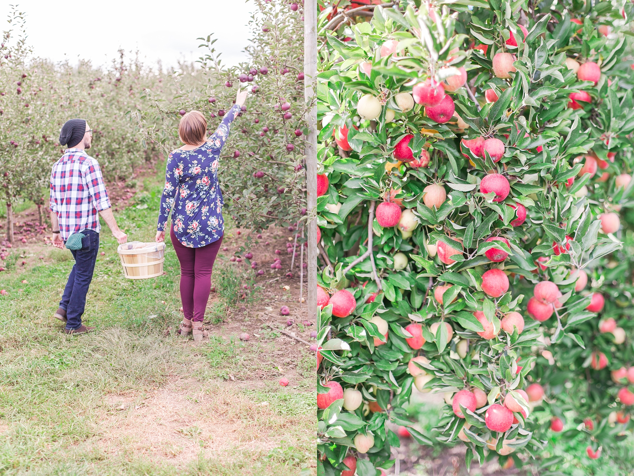 playful-fall-engagement-photos-at-hy's-cider-mill-ochard-in-bruce-township-michigan-by-courtney-carolyn-photography_0019.jpg