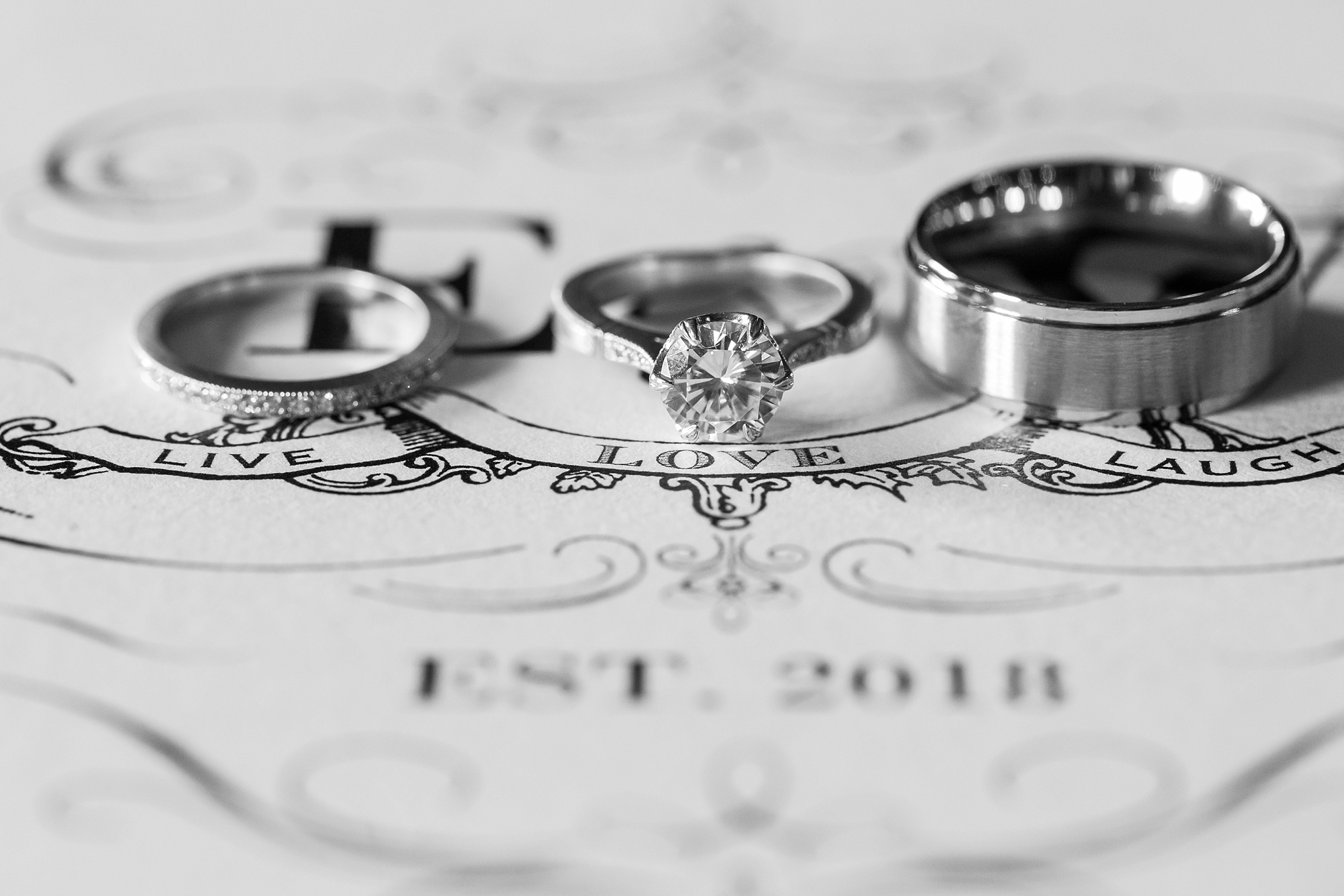 candid-romantic-wedding-photos-at-the-masonic-temple-belle-isle-detroit-institute-of-arts-in-detroit-michigan-by-courtney-carolyn-photography_0029.jpg