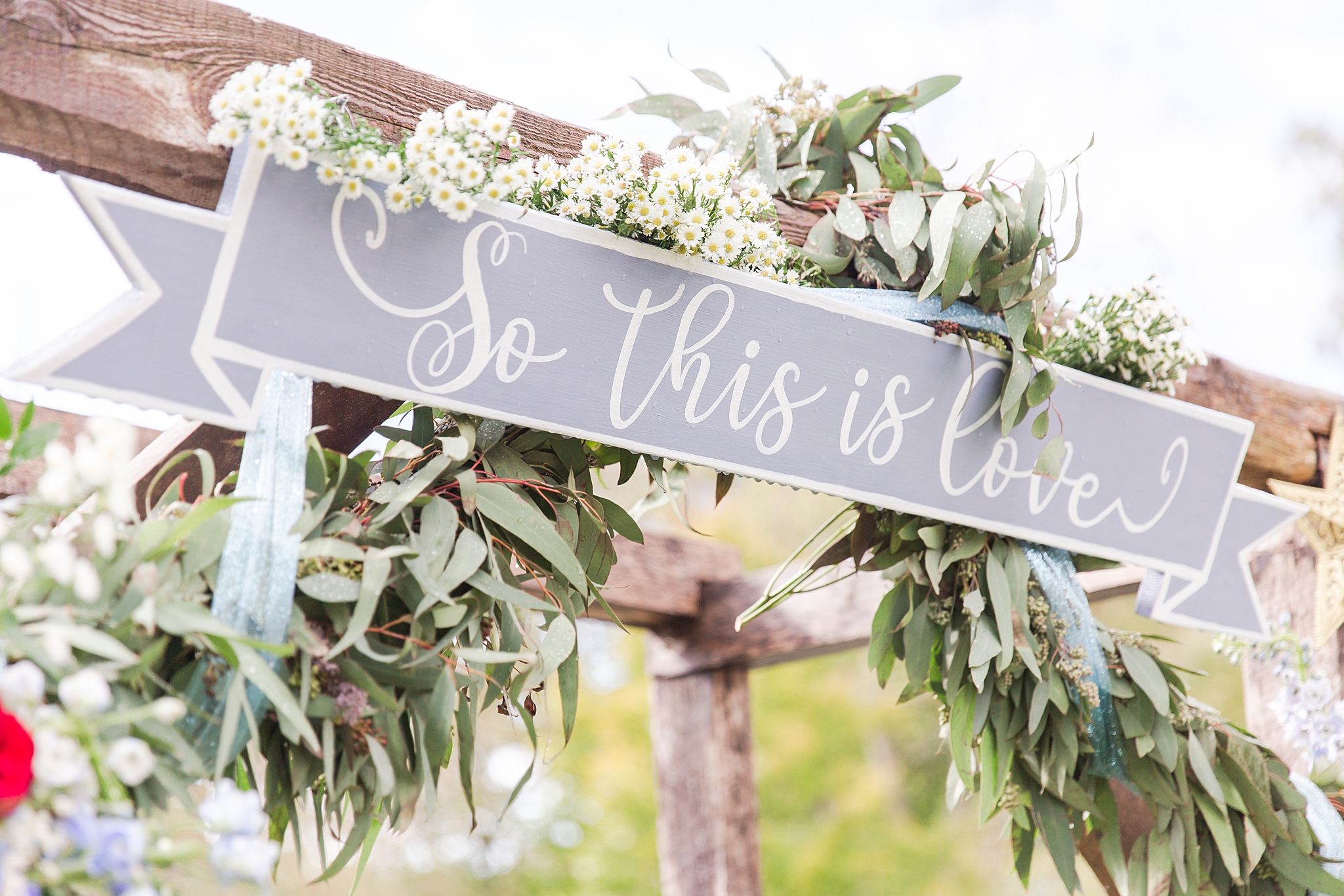 rustic-whimsical-wedding-photos-the-vale-royal-barn-in-fenton-michigan-by-courtney-carolyn-photography_0061.jpg