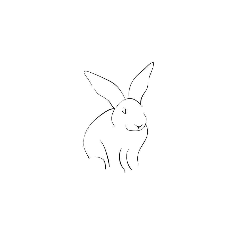 Med_Rabbit_Icon_Footer.jpg