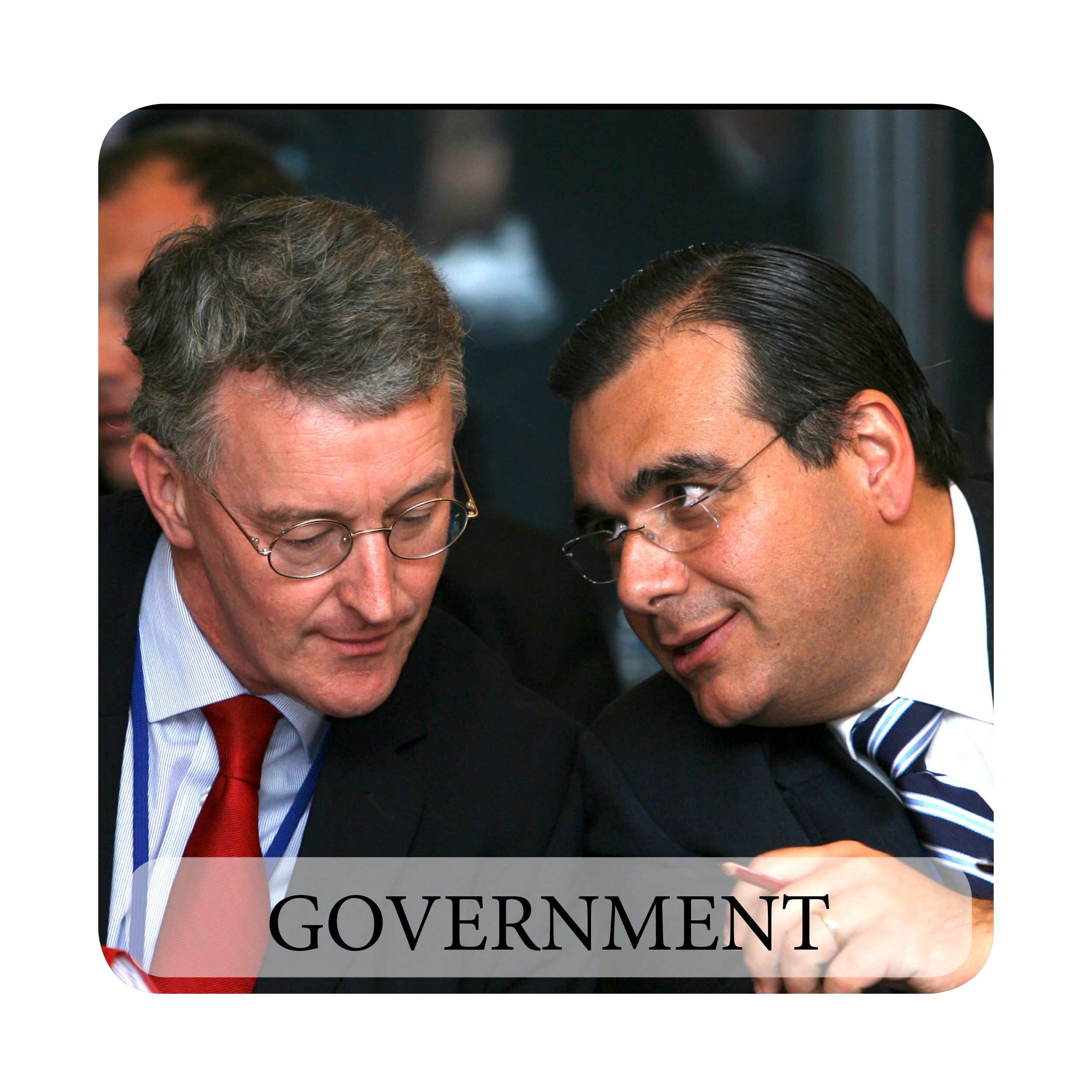 TheDaboubPartnership_widgets-government-4.png