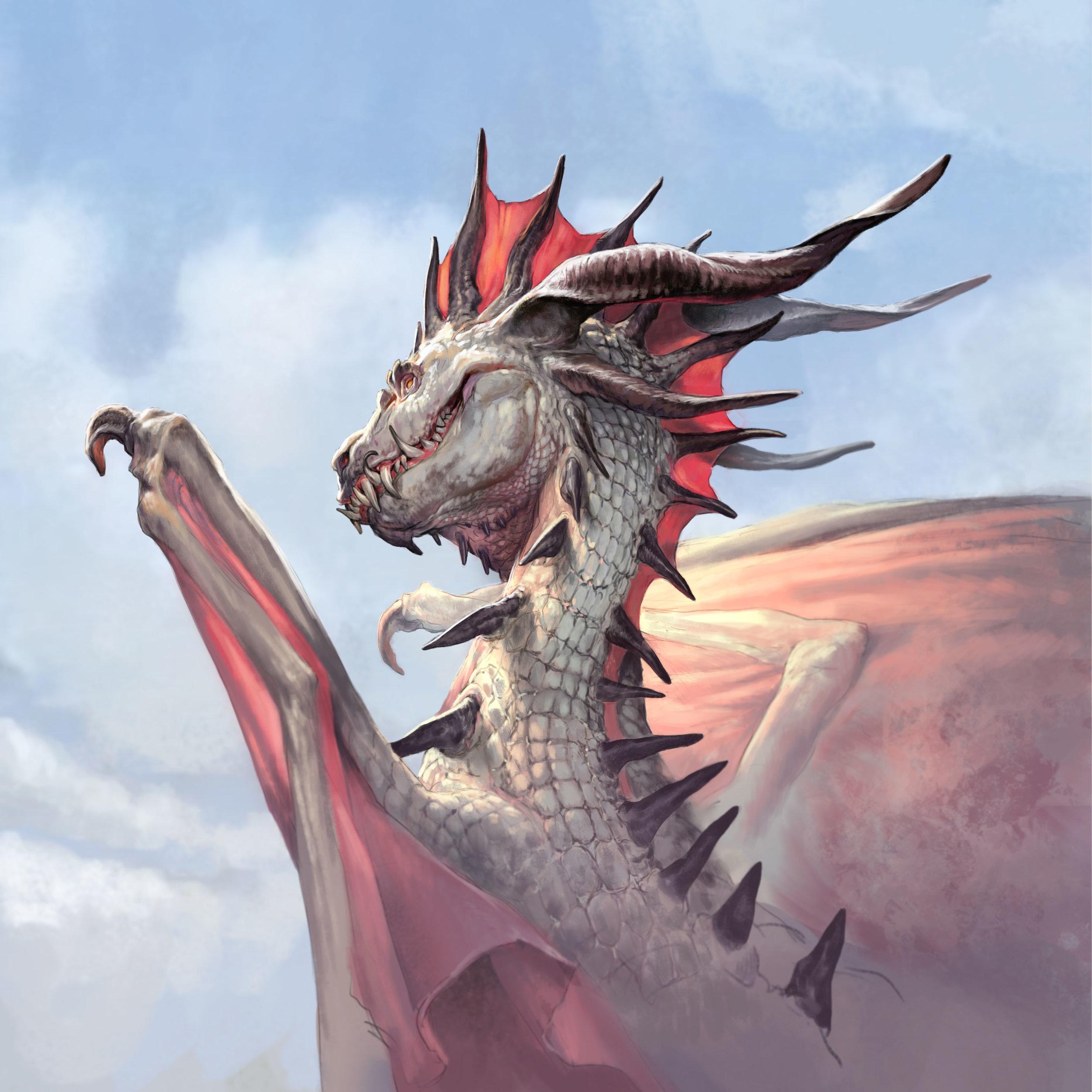 art sleeve dragon.jpg