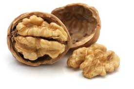 Truth be told, I'm not a huge fan of eating walnuts. They make my mouth itch. But I do like that they look kinda like brains. [Curator's Comment of the day]