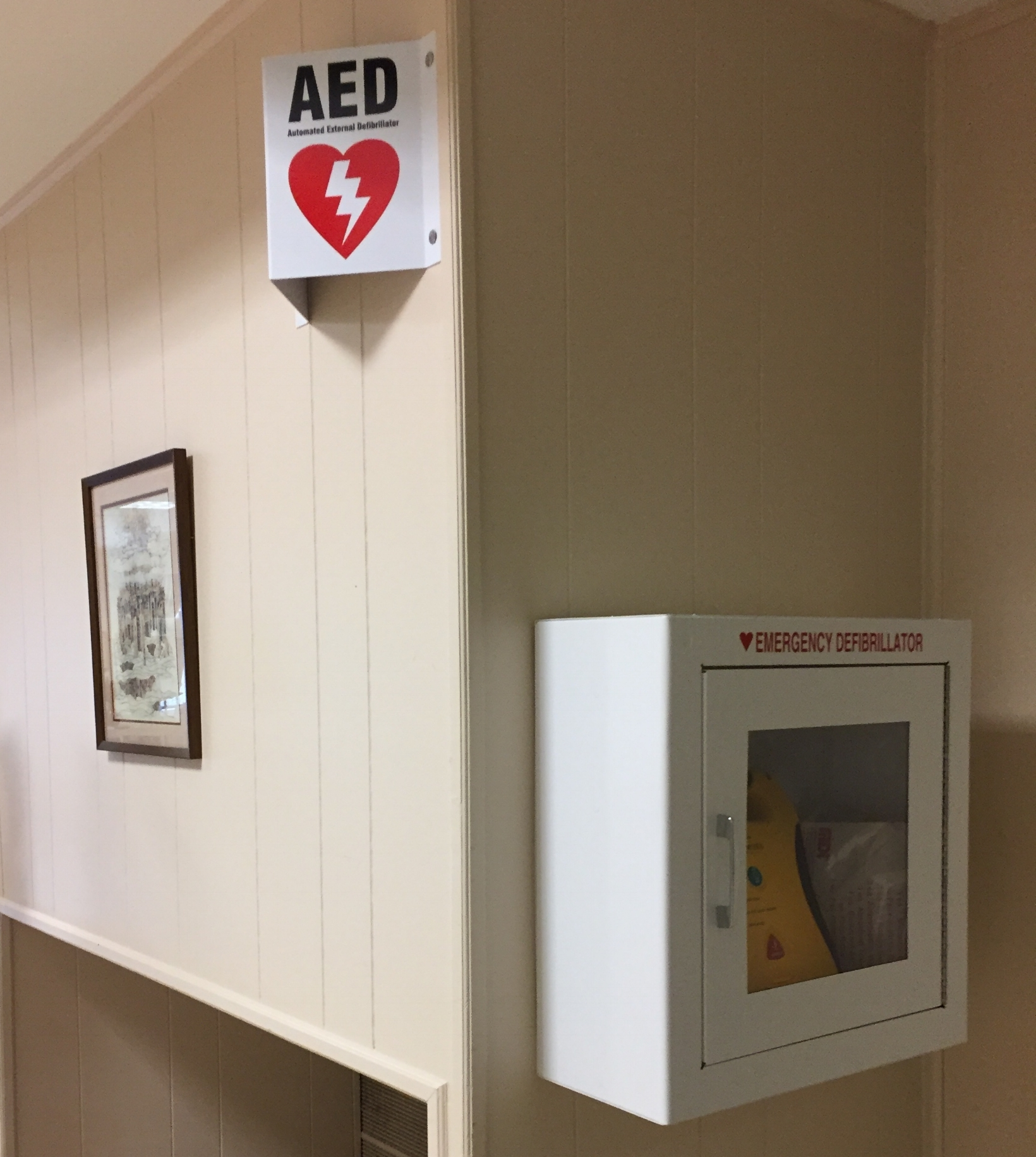 Year of Health - The Beth El Sisterhood has installed an AED (Automated External Defibrillator) in the Social Hall. There is a sign near the bathroom indicating where the AED is located. It is our fervent prayer this device will never need to be used, but feel confident, that if it is needed and used, it is safe and YOU just might save a life.