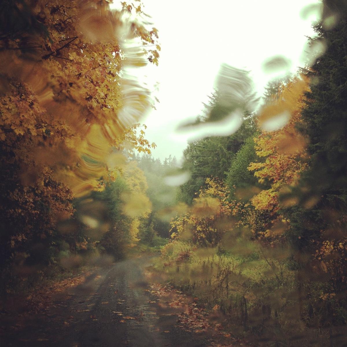 Autumn Rain.jpg