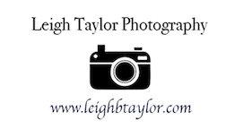 taylor-logo.jpg