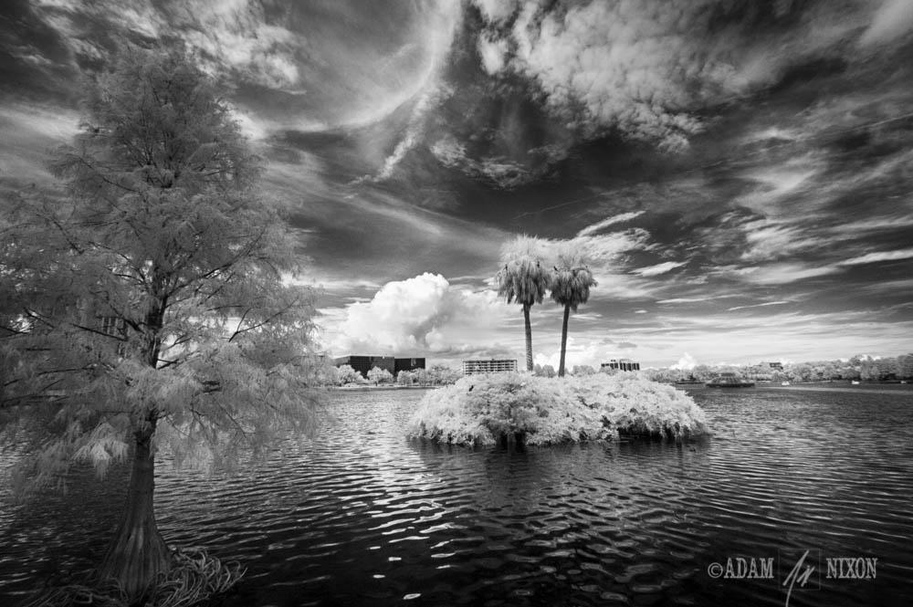 Lake Eola #3