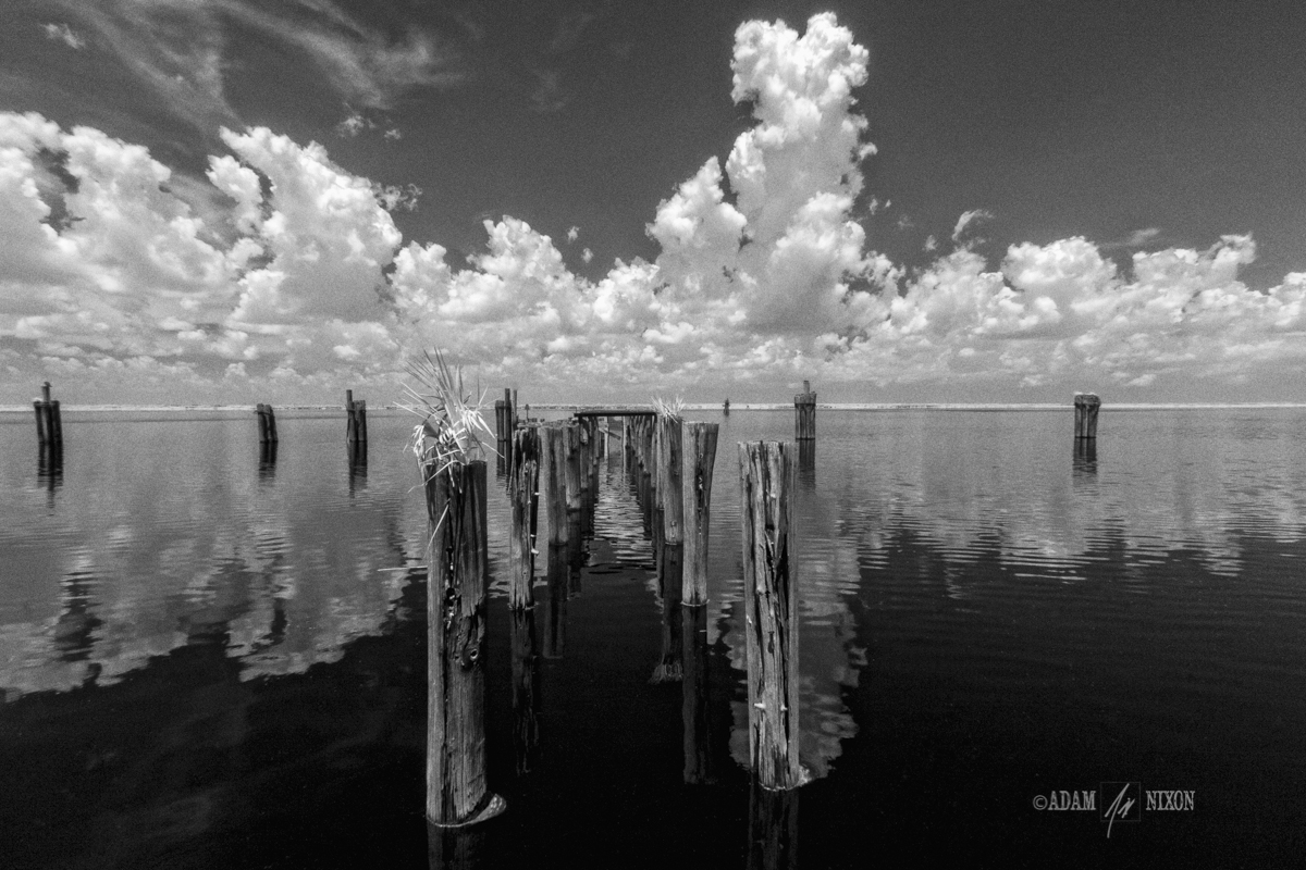 Abandoned Wooden Docks