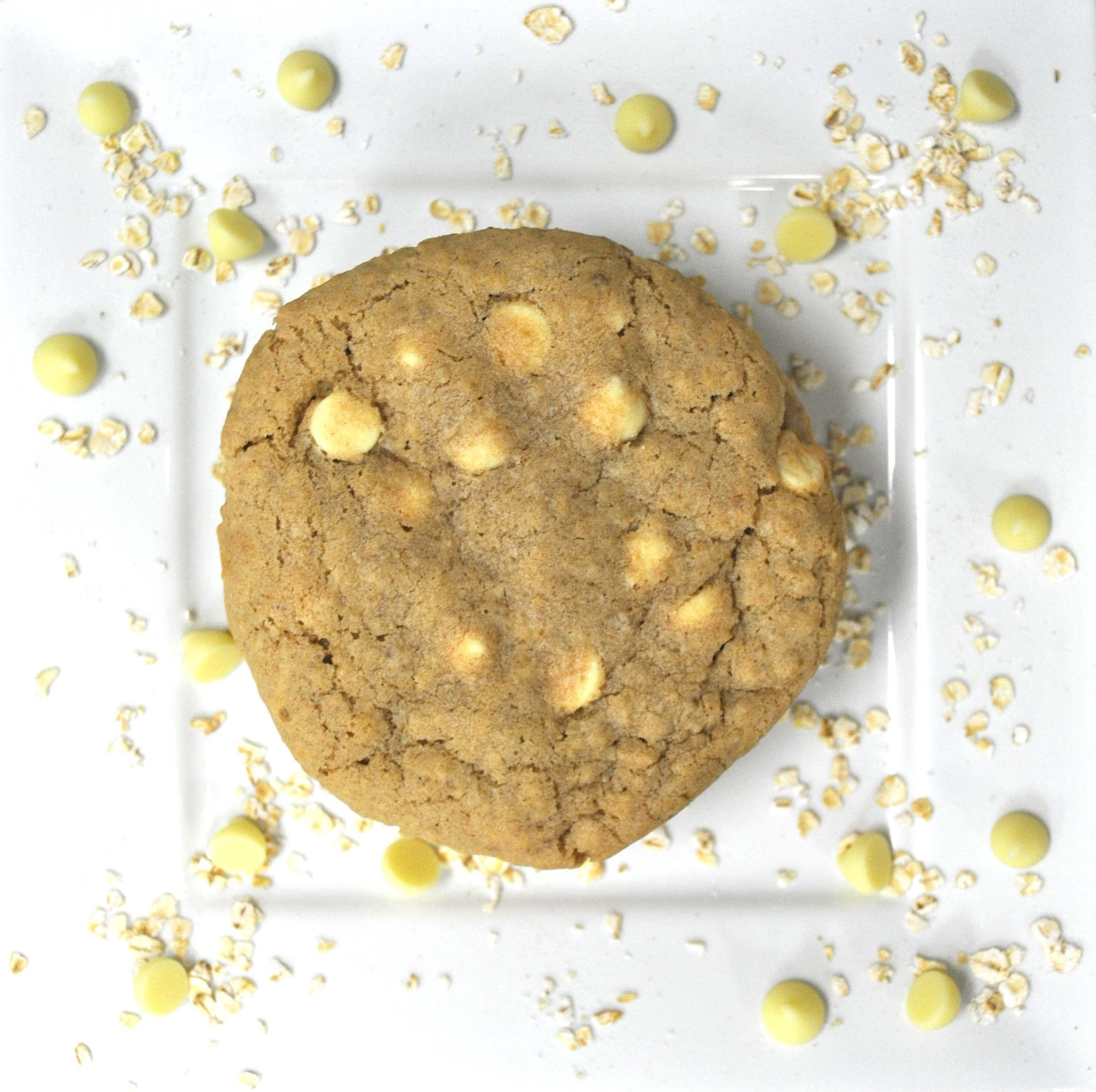 Oatmeal White Chip.jpg