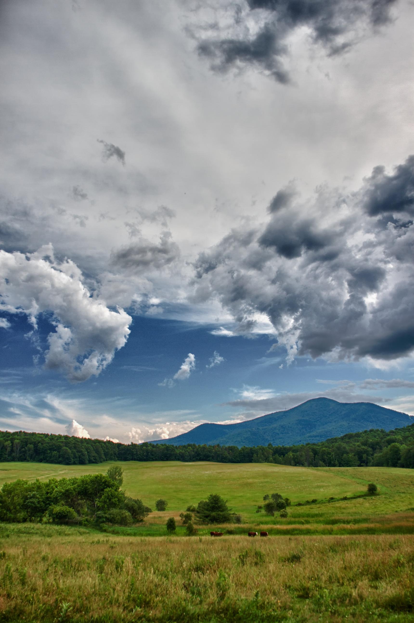 Mt. Ascutney Pastures.jpg