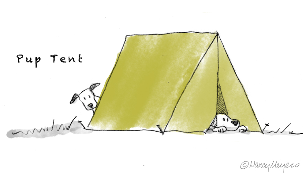 Pup-tent-SS.jpg