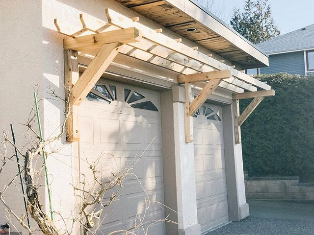 A new #trellis installation to support climbing vines.